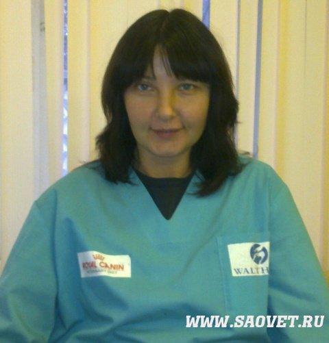 ветеринарный врач вакансии нижний новгород