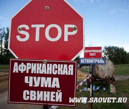Информация об эпизоотической ситуации в Российской Федерации за период с 04 по 11 сентября 2017 года (африканская чума свиней, нодулярный дерматит, бешенство)